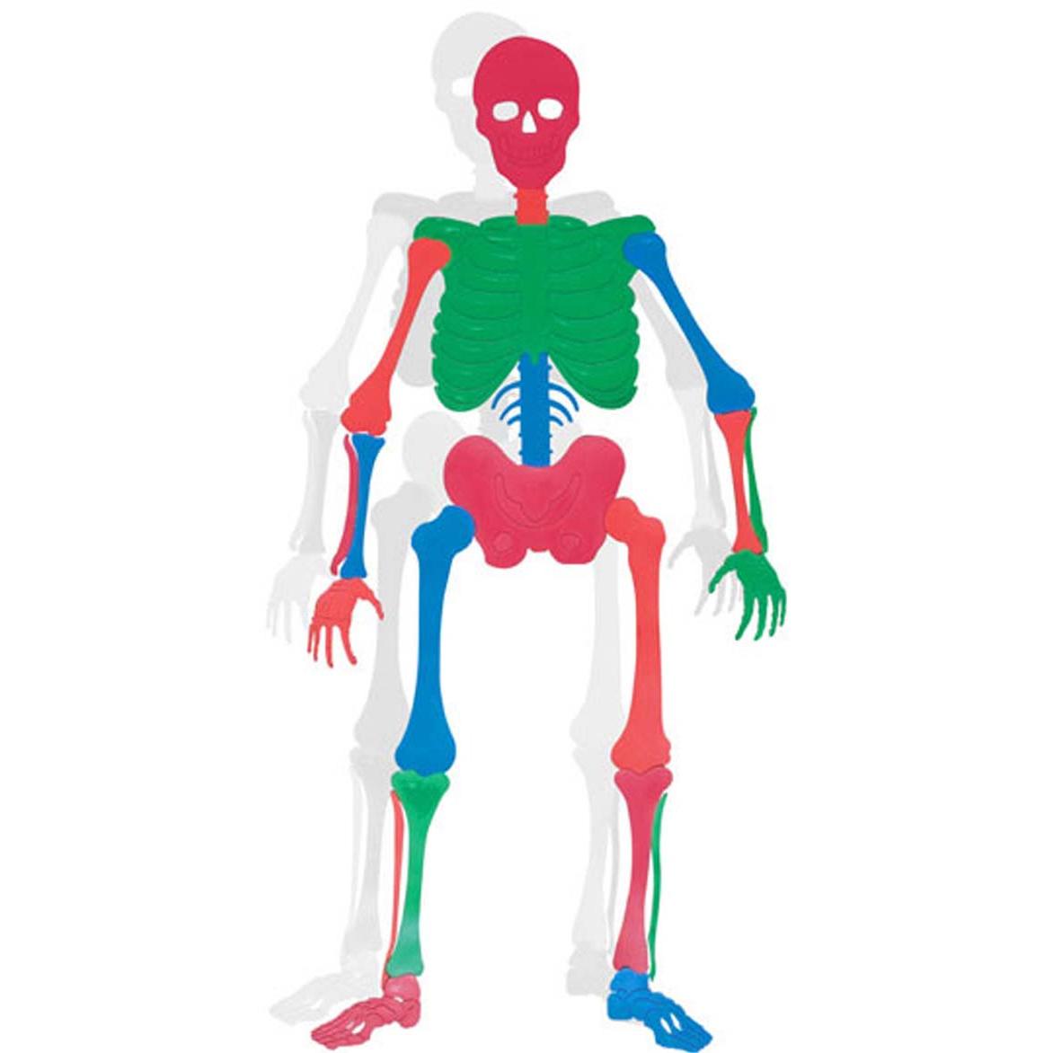 bones_skeleton_educational_poly_floor_puzzle_set
