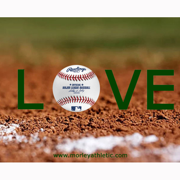 Baseball Love Meme