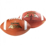 Alpha NFHS Full Size Leather PRACTICE Football