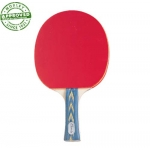 Pips Out Rubber Face Table Tennis Paddle